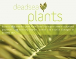 DEADSEA PLANTS AHAVA