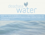 DEADSEA WATER AHAVA